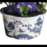 Blue Canton 4 Lobed Cachepot | Gracious Style