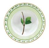 Verdures Rim Soup Plate 7.5 oz | Gracious Style
