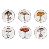 Champignon Set of Six Dinner Plates 10.25 in Round | Gracious Style