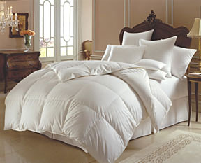 Mirage Siberian 800 Fill Power Down Duvet Cover