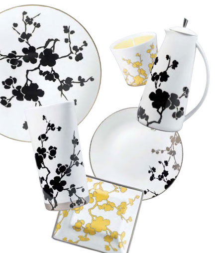 Raynaud Ombrages Limoges Dinnerware