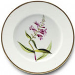 Botanique Dinnerware | Gracious Style