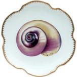 Seascape Shells Dinnerware | Gracious Style