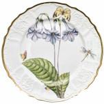 Botanical Studies Dinnerware