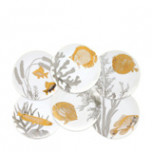 Aquarium Canapes Mixed Boxed Set/6 | Gracious Style
