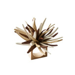 Quill Napkin Ring Natural/Brown