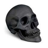 Skull Black 8 x 4.5 x 5.5 in