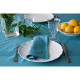 Ana Turquoise Napkin 18.5 x 18.5 in