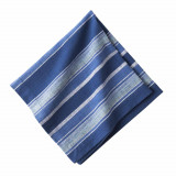 Indigo Stripe Napkin 20 in. sq
