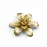 Ginger Blossom w/ Brass Plate Flower w/ Box