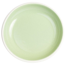 Bloom Mint Enamel Dinnerware