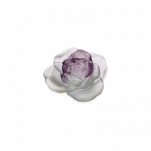 Rose Passion Green & Pink Flower Diam 12 Cm | Gracious Style