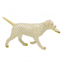 """Shaded Vhj Frisbee Dog 6.75""""L X 1.75""""W X 3.5""""H 
