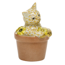 """Shaded Vhj Flower Pot Kitty 1.75""""L X 1.5""""W X 2.5""""H 
