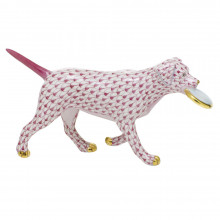 """Shaded Vhp Frisbee Dog 6.75""""L X 1.75""""W X 3.5""""H 