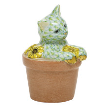 """Shaded Vhv1 Flower Pot Kitty 1.75""""L X 1.5""""W X 2.5""""H 