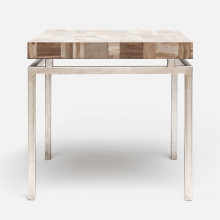 Benjamin Side Table 22 in L x 22 in W x 21 in H Texturized Silver Steel/Petrified Wood Light Mix | Gracious Style