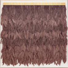 Icarus Feathers Mauve, Framed | Gracious Style