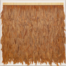 Icarus Feathers Marigold, Framed | Gracious Style