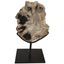 """Wood Fossil with Stand, 10"""" 