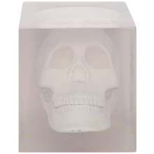 Skull in Resin, White | Gracious Style