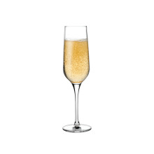 Refine Clear Champagne Glass , Set Of 2 | Gracious Style
