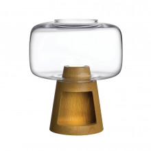Tree Clear Night Lamp | Gracious Style