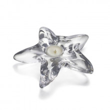 Starfish Tealight in Gift Box | Gracious Style