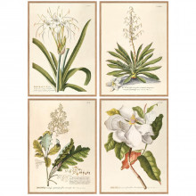 """Set of Four White Flower 28"""" x 39"""" Wall Art Designed by Henrik Dybdahl - Oakwood/Paper/Acrylic (Special Order) 
