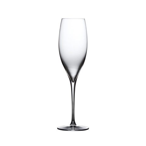 Terroir Clear Champagne  Set Of 2 | Gracious Style