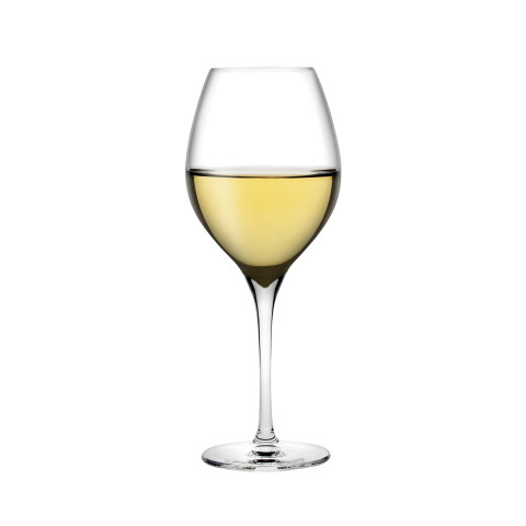 Vinifera Clear White Wine Glass, Set Of 2 | Gracious Style