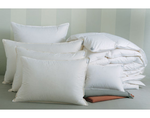 Arcadia Down Alternative Pillows | Gracious Style