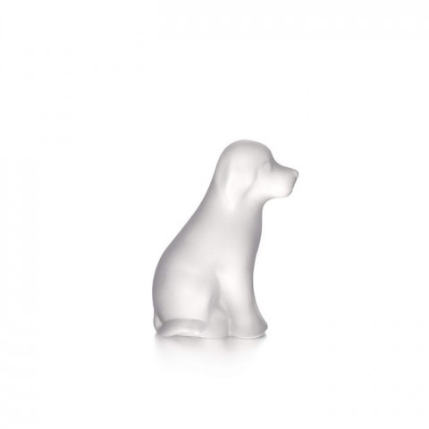 Frosted Dog in Gift Box | Gracious Style